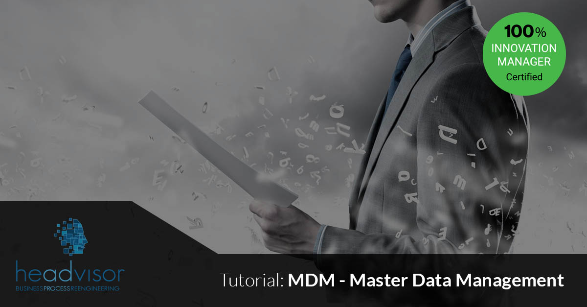MDM Master Data Management la Transizione completa in 14 fasi